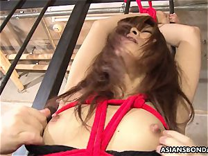 trussed asian girl got her labia played by mischievous perverts
